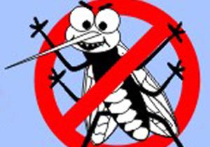 Casos de dengue têm queda em Londrina